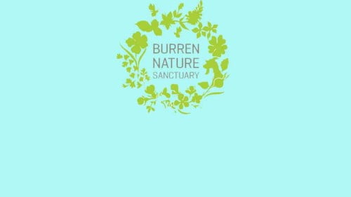 Burren Nature Sanctuary Featured Photo