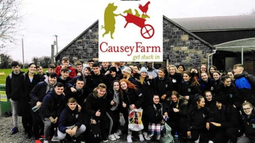 Causey Farm Featured Photo