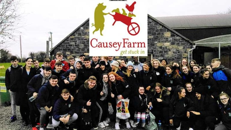 Causey Farm Featured Photo | Cliste!