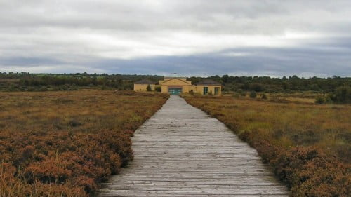Corlea Trackway Featured Photo