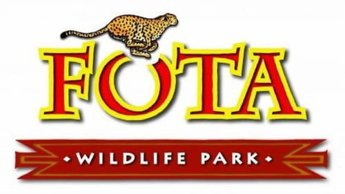Fota Wildlife Featured Photo