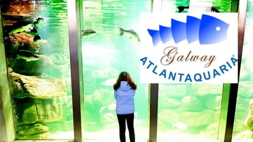 Galway Atlantaquaria Featured Photo