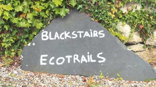 Blackstairs Eco Trails Featured Photo