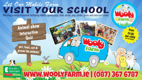 Wooly Farm Featured Photo